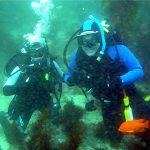 Scuba Diver Course photo