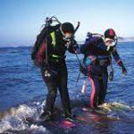 Beach Scuba Dive